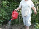 Огород требует поливки