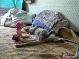 Кукла Агатка и кошка Манька