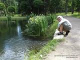 У пруда в нижнем парке, Петергоф