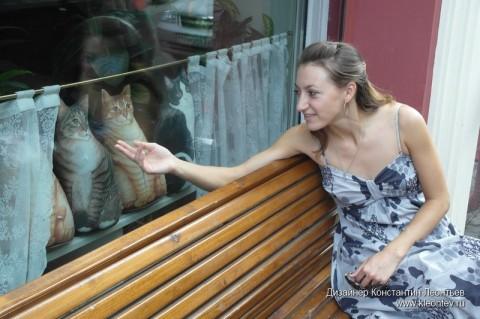Кошки в окне ресторана Мари Vanna