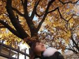 Настя спряталась под большим дубом с золотыми листьями
