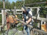 Фото бабушка ремонтирует теплицу в саду