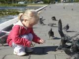 Фото девочка кормит голубей