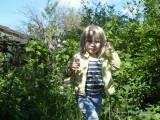 Фото девочка в кустах смородины