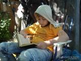 Фото мальчика в кесле с книгой на даче
