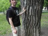 Фото мужчина в шортах у дерева