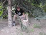 Фото парень под елкой и большой гриб
