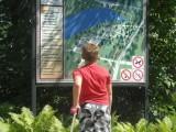 Мальчик изучает схему парка