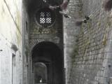 Летающие метлы в Старом Граде