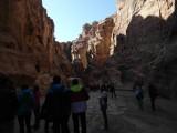 Туристические группы на пути в Петру