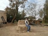 Пустынный ашрам