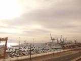Порт Эйлат забит новыми машинами
