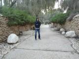 Парк у могилы Бен-Гуриона в Сде-Бокер