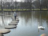 Пруд в парке Зеленоградска