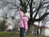 В парке Калининграда