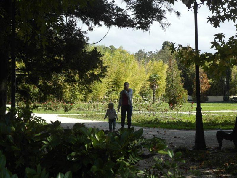 Дорожка в нижней части парка
