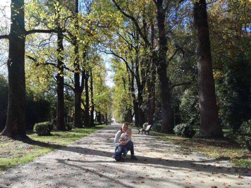 Главная аллея парка Южные культуры