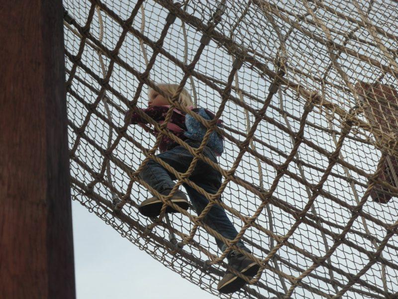 Игровая площадка Джунгли в Сочи-парке, 16 февраля
